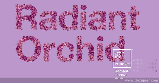 radiant_orchid_pantone_2014_acdg_02